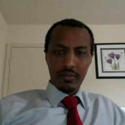 Abel D. Ayele
